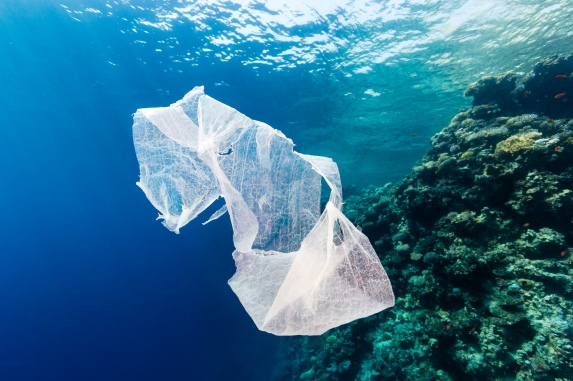 plastic bag in sea.jpg